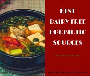 best non dairy probiotic foods