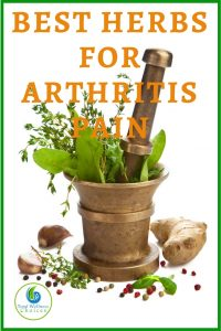 Best herbs for arthritis and joint pain
