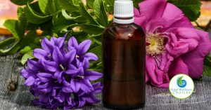 Different Uses of Essential Oils