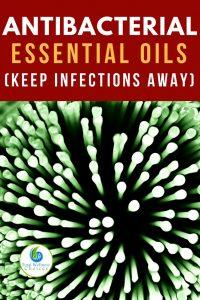 Best Antibacterial Essential Oils