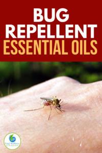 Bug repellent essential oils