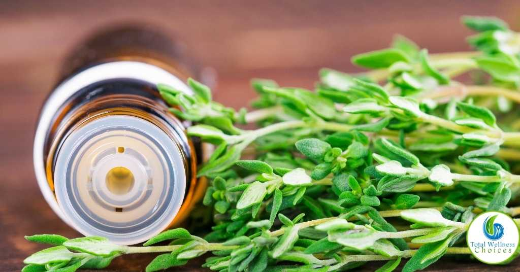 Thyme essential oil uses and benefits